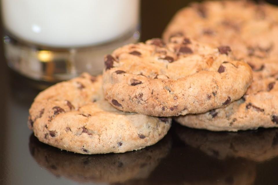 fit galletas