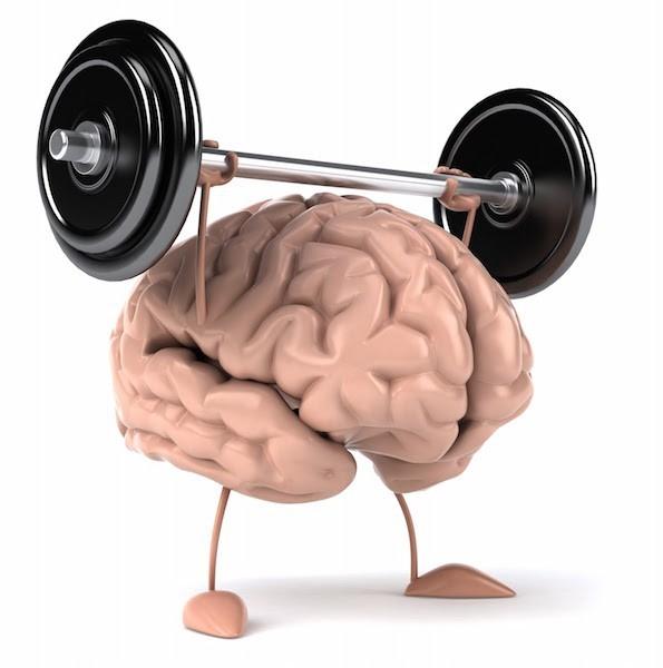 CURIOSIDADES/ ¿Podemos cambiar nuestro cerebro con acciones o es defecto de fábrica?