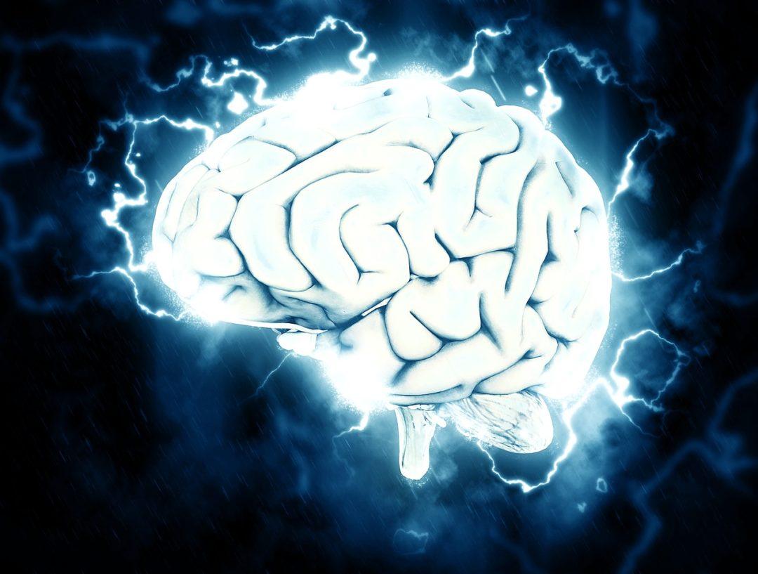 CURIOSIDADES/ ¿Existen centros del placer en el cerebro?