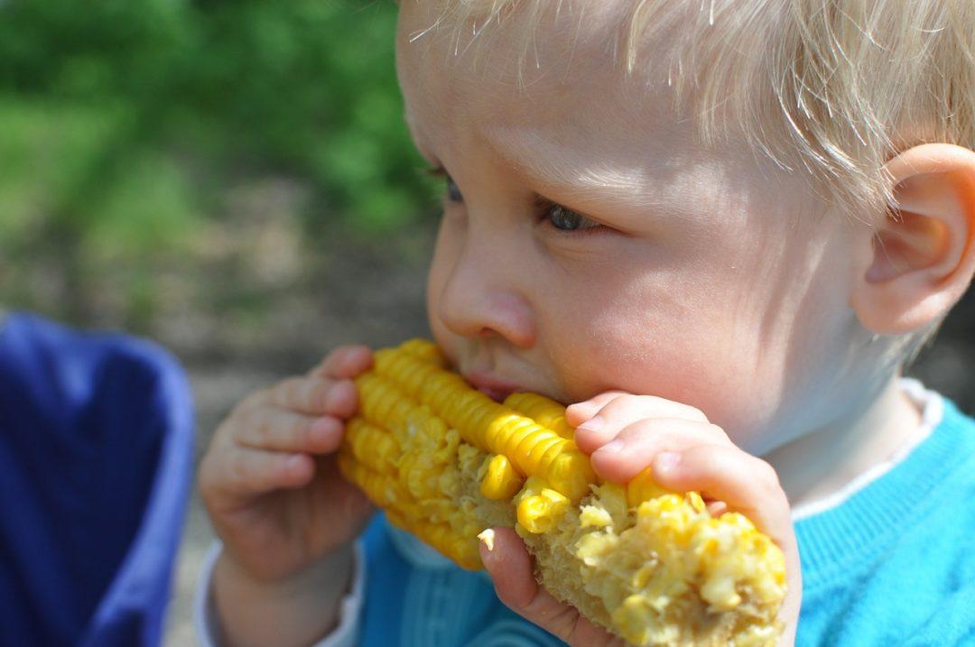 NUTRICIÓN PARA NIÑOS/ Mi hijo no me come