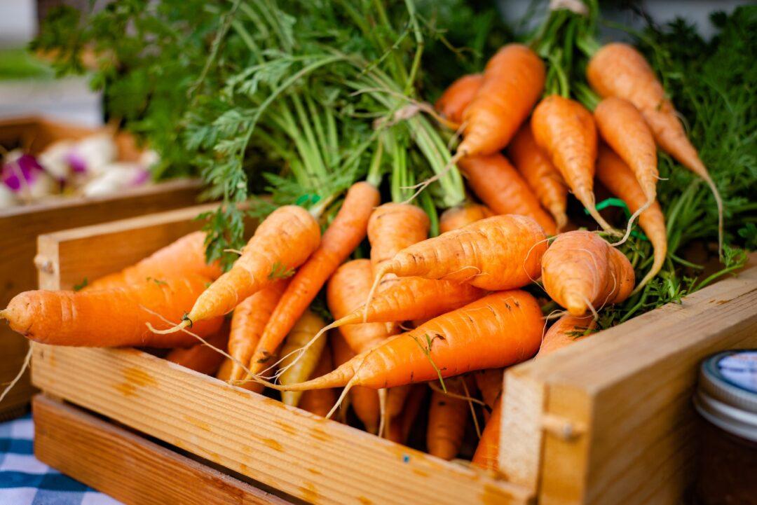 Propiedades y beneficios de la zanahoria
